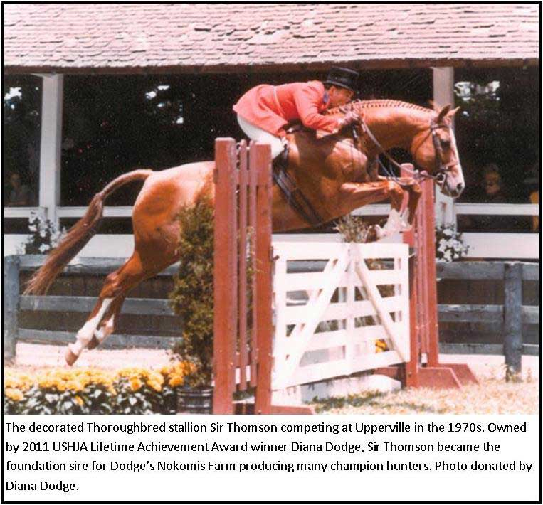 pastExhibit_2013_Thoroughbred_SirThomson_Lg.jpg
